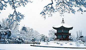 冬の韓国の写真 ソウル、釜山年間気候カレンダー ソウル ■気候: 亜寒帯冬季少雨気候 ... 年